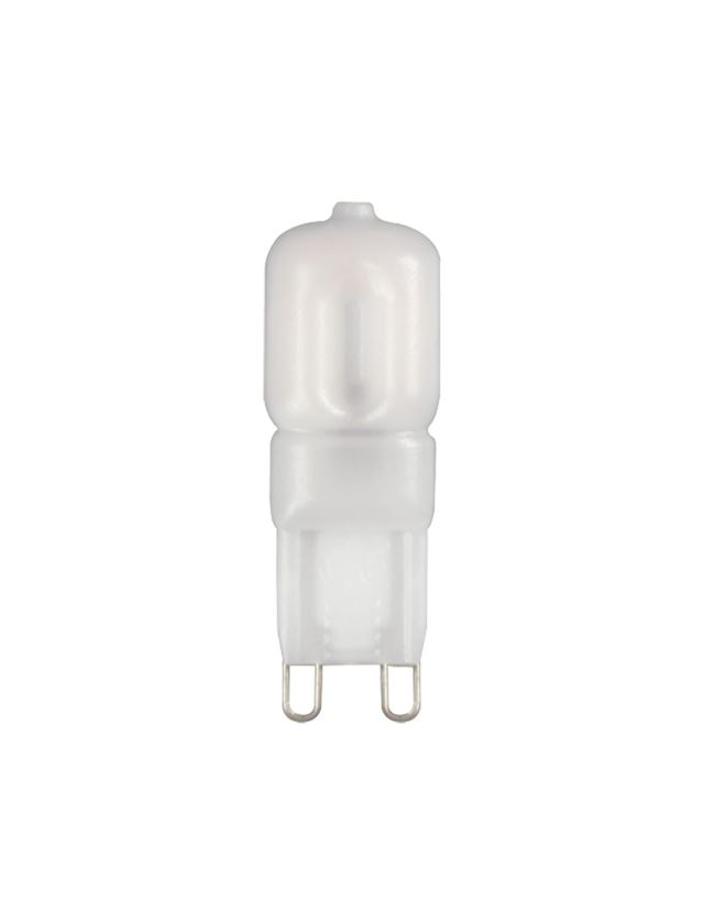 Lampen   verlichting: LED-stiftsokkellamp G9